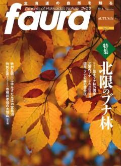 faura37-240x328.jpg