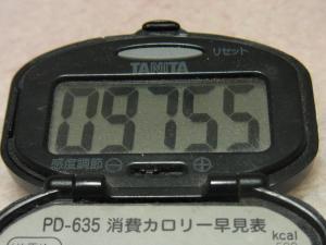 120414-060万歩計(S)