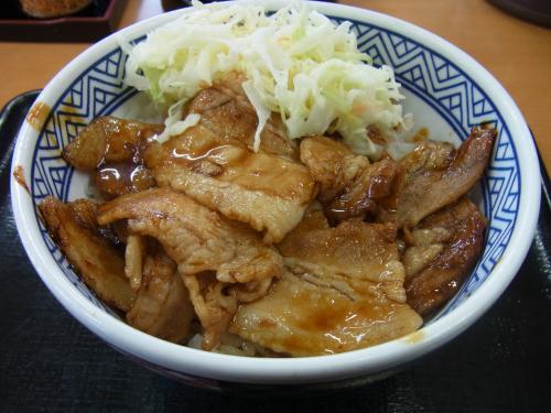 120422-102豚丼(S)
