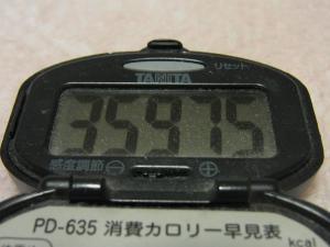120422-050万歩計(S)