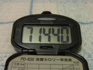 120505-040万歩計(S)