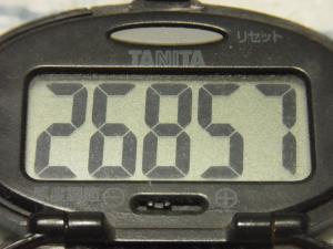 120512-040万歩計(S)