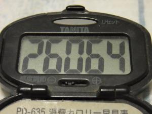 120526-060万歩計(S)