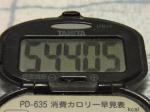 120527-050万歩計(S)