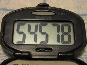 120610-050万歩計(S)