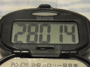 120623-050万歩計(S)