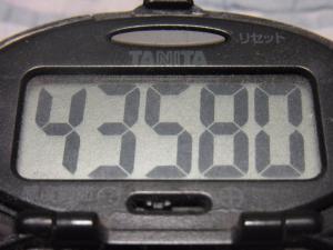 120722-060万歩計(S)