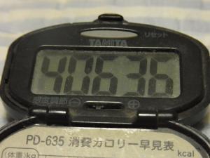 120805-060万歩計(S)