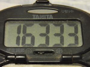 120811-050万歩計(S)