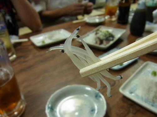 120904-007シラウオ上げ(S)