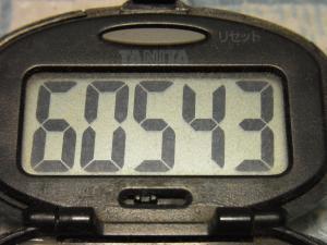 121007-060万歩計(S)