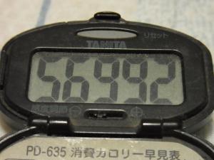 121014-251万歩計(S)