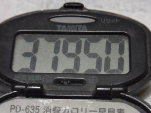 121022-500万歩計(S)