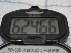 121028-250歩数計(S)