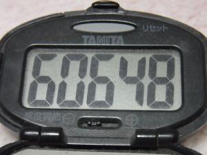 121104-261万歩計(S)