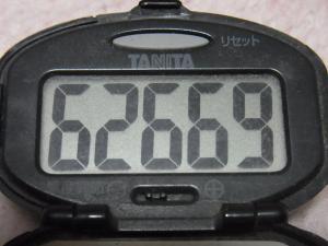 121111-251万歩計(S)