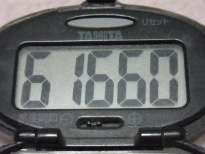 121118-250万歩計(S)
