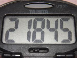 121123-241万歩計(S)