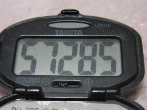 121124-251万歩計(S)