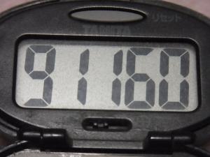 121125-251万歩計(S)