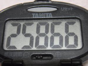 121201-250万歩計(S)