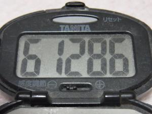 121202-251万歩計(S)