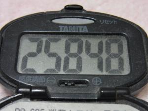 121215-261万歩計(S)