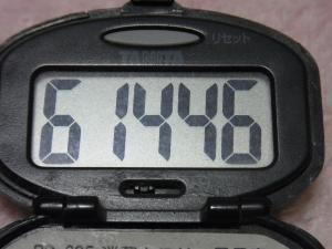 121216-241万歩計(S)
