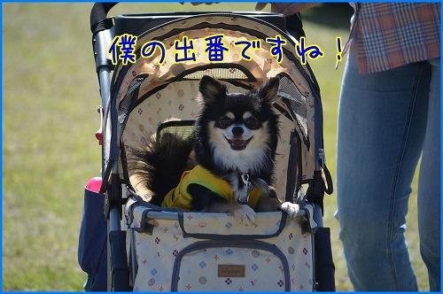 2014奈良訓練 (1)