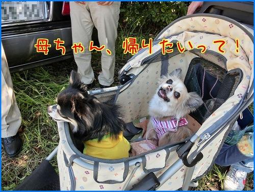 2014奈良訓練 (2)