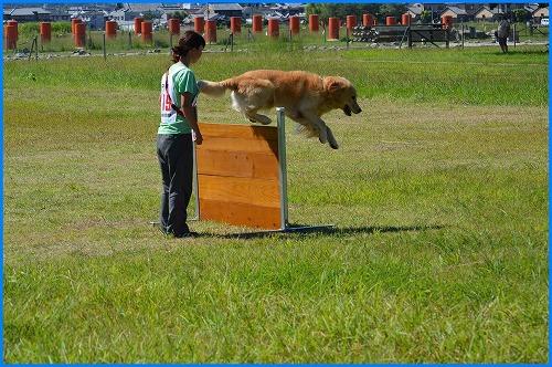 2014奈良訓練 (10)