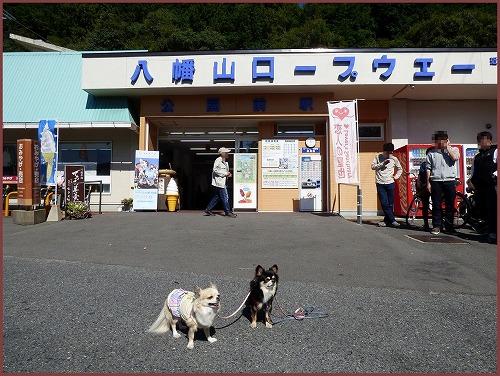 近江八幡1 (1)