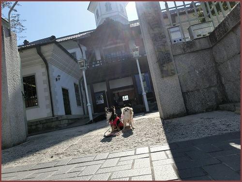 近江八幡1 (3)