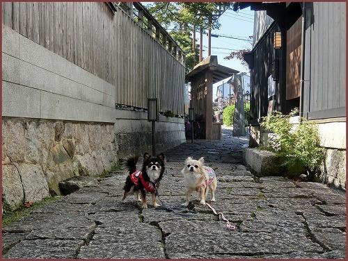 近江八幡1 (6)