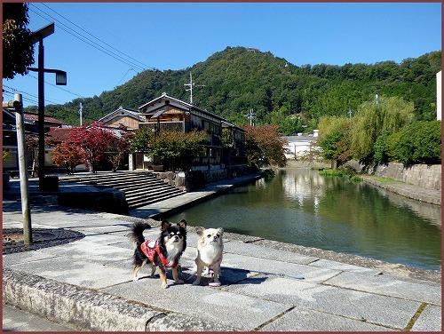 近江八幡1 (10)