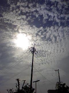 うろこ雲の空!