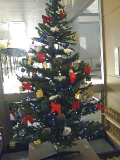職場のクリスマスツリー!