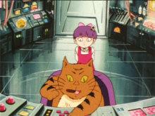 mizuki-gejigejiのNEWS!-ボス猫