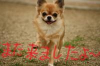 IMG_7211-1.jpg