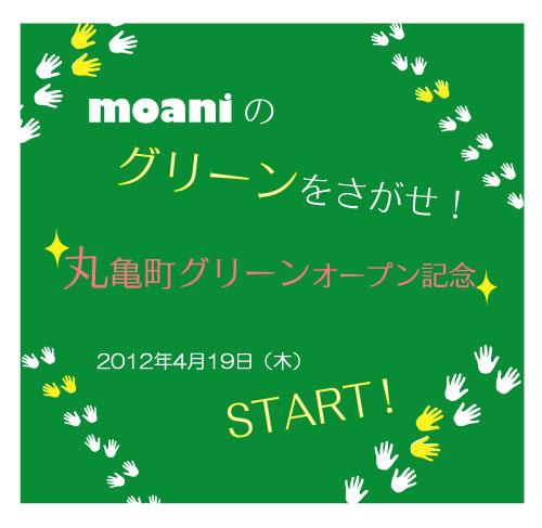 maru_green.jpg