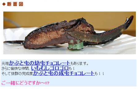 カブトムシケーキ 断面図