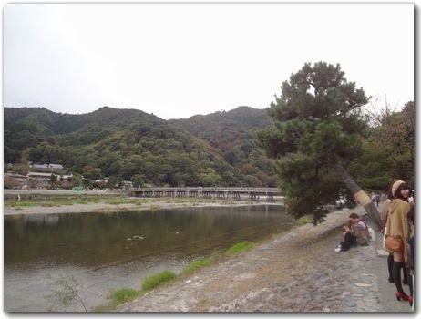 20111110arashiyama.jpg