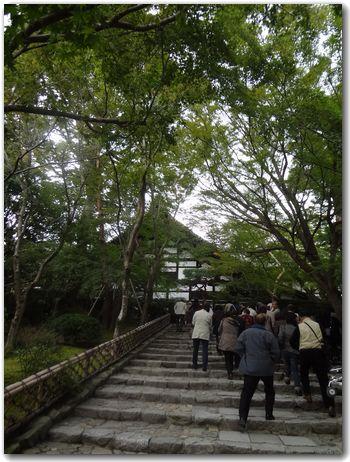 20111110rtounji1.jpg