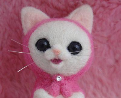 桜マト白猫5