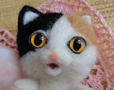 三毛猫ちゃん2