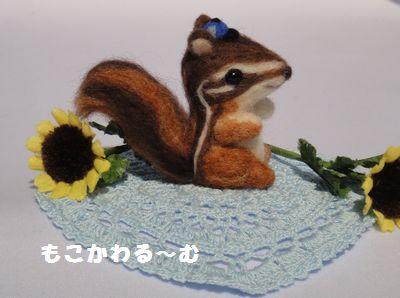 子リスくん4
