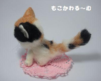 三毛猫1-3