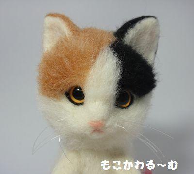 三毛猫1-4