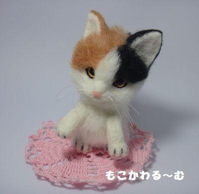 三毛猫1-1