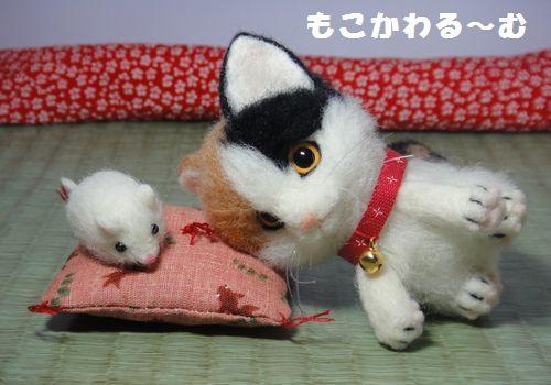 三毛猫3-5